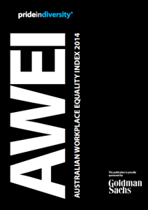 2014 AWEI Publication
