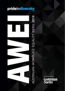 2016 AWEI Publication